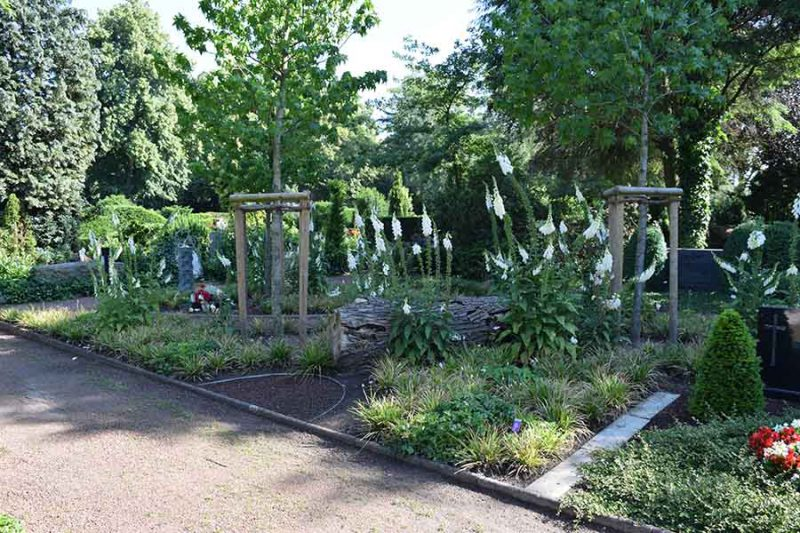 Baumbestattungen Friedhof Wiedenbrück